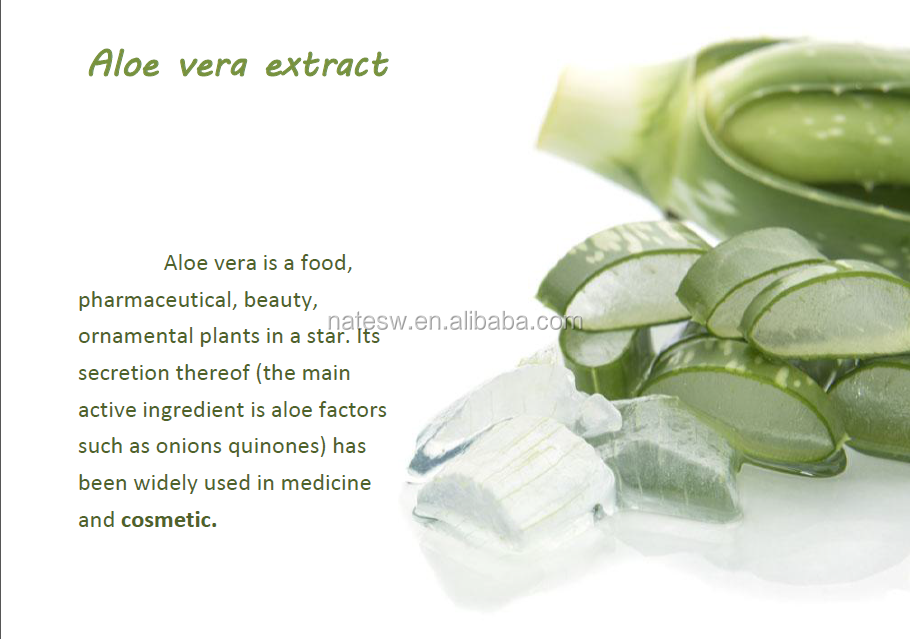 Best Selling Natural Aloe Vera Emodin Extract 98%