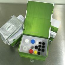 LSY-10049 ELISA Chlortetracycline Test Kit antibiotic residues test kit in tissue
