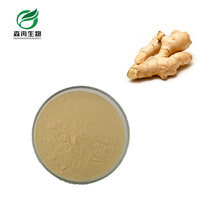 SR Factory Supply Ginger 5% Gingerols Organic Extract