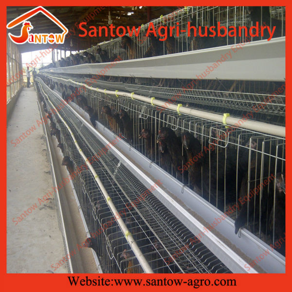 Fully automatic steel wire mesh chicken cage / Baby chick cage / chicken layer cage