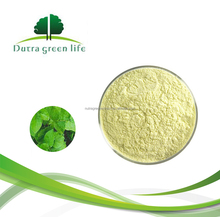 Top Quality 100% Nature Kava Extract Powder