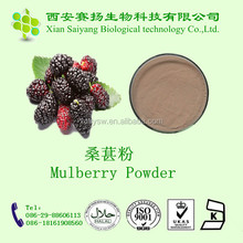 Mulberry Leaves Powder Mulberry Leaf Extract Powder White Mulberry Leaf Powder