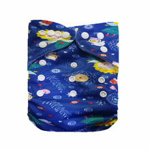 LilBit Baby Beauty Girl Print Pocket Infant Cloth Diapers