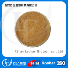 High quality White Mustard Seed Extract