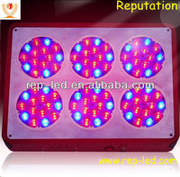 Modern design good decorative plant indoor grow lights