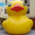 Commercial 7M big floating sunny duck giant inflatable yellow duck for advertising promotion