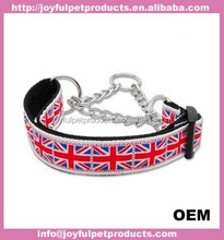 attractive pet collar and leash/pet dog for adoption
