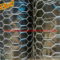 Chicken wire fence for plants and animals