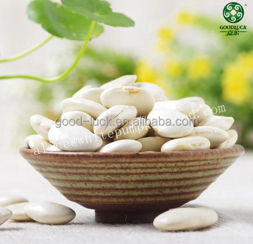 Large White Kidney Beans,65,85pcs