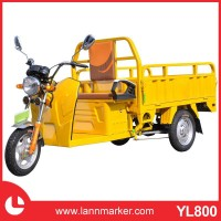 Newest Cargo Electric Tricycles