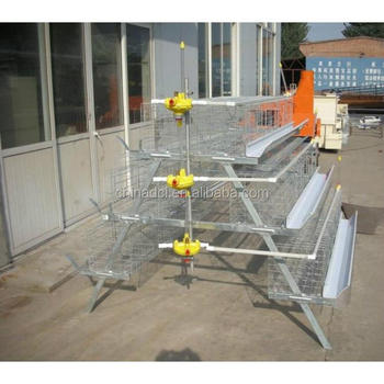 broiler_chicken_cage_ladder_type/Atype chicken cage africa