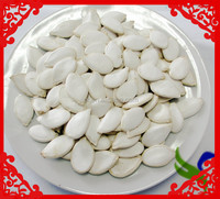 Buy Best Snow White Pumpkin Seeds in China on Alibaba.com