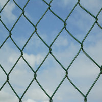 Direct Factory Hot Sale Galvanized/PVC Coated Chain Link Fence/Diamond Chain Link