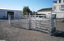 Australia Cheap Cattle Yard Panels/Horse Stable Panels for Sale with low cost