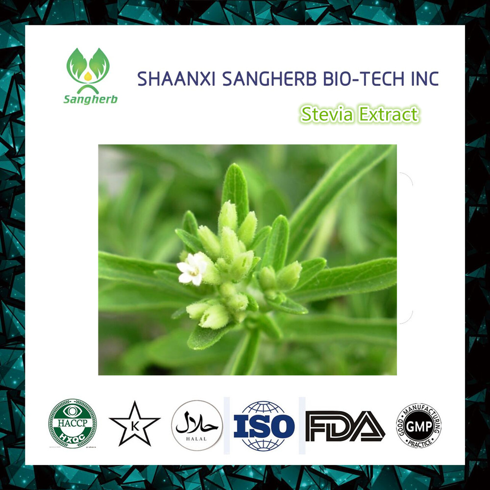 high quality sweetener raw material stevia plant extract