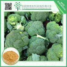 high quality natural sulforaphane extarct broccoli seed extract 2%