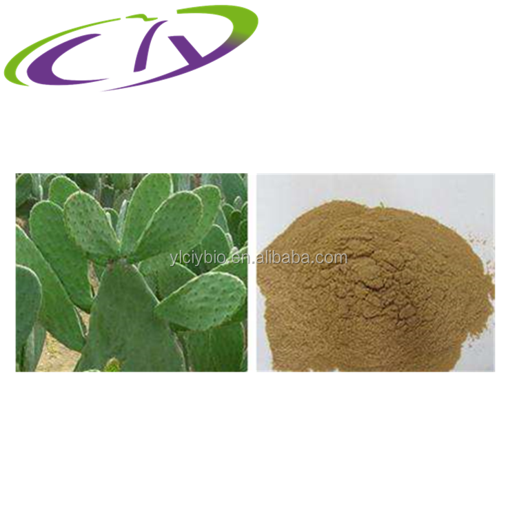 Free sample Cactus plant Extract flavonoids quercetin -3 - glucoside/alcohol acid