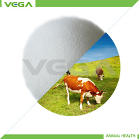 2013 hot selling chemical pharamceutical free sample MOQ 1kg veterinary medical china vitamin c coated