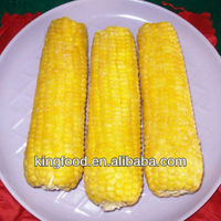 Hot selling iqf sweet corn