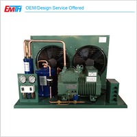 Open Type Bitzer Condensing Unit For Cold Storage Freezer Room