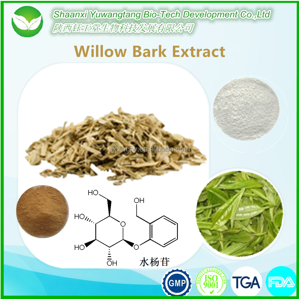 Willow stem bark extract powder for anti-rheumatism