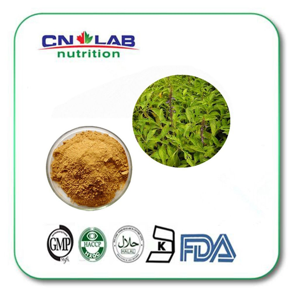 Natural Coleus Forskohlii Extract For Weight Loss/coleus Forskohlii Root Extract/20% 98% Forskolin