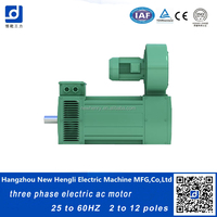 NHL high efficient small induction 200kw 230V ac motor