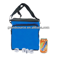 12 Pack Insulated Cooler