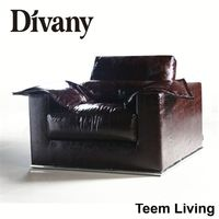 DIVANY best office sofa design/bed couch/l shaped couch D-44-Q
