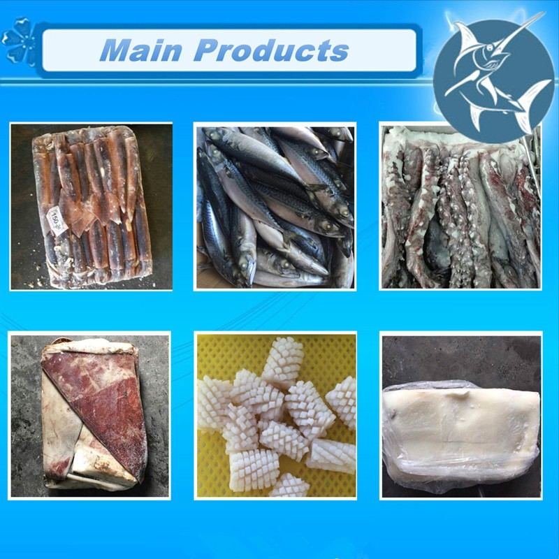 IQF sardine fish frozen seafood wholesale