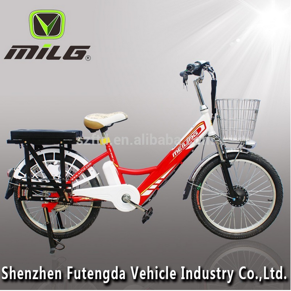 22 inch hot selling cargo lithium battery electric bicycle 48v gig loading electric bike for sale