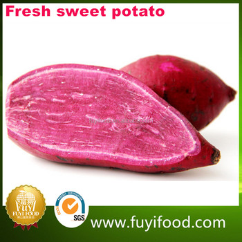 Fresh Potato Buyers Chinese Purple Sweet potato