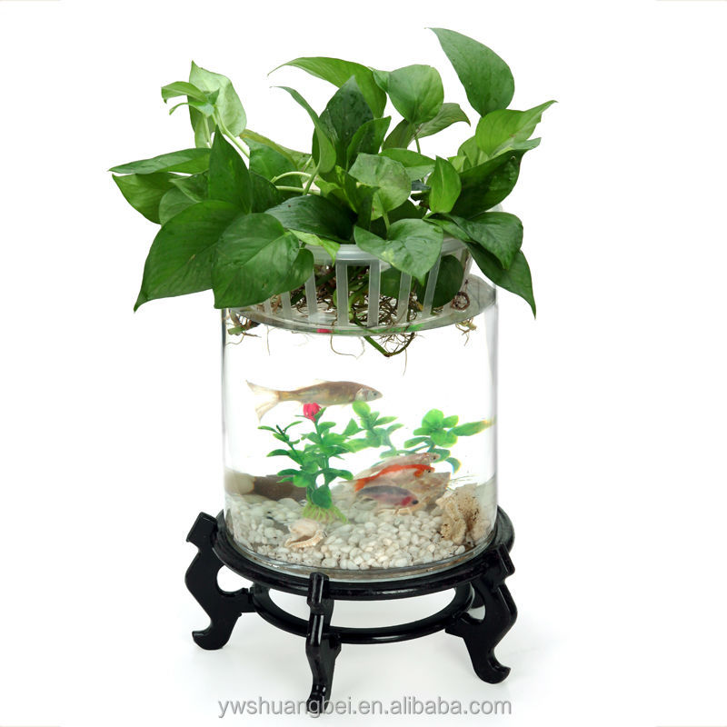Beautiful Wooden Base Coffee Table Aquariums Fish farm Tank aquarium fish tank table
