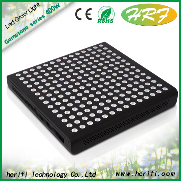 Indoor Plant Tissue Culture 600w led grow light globale grow