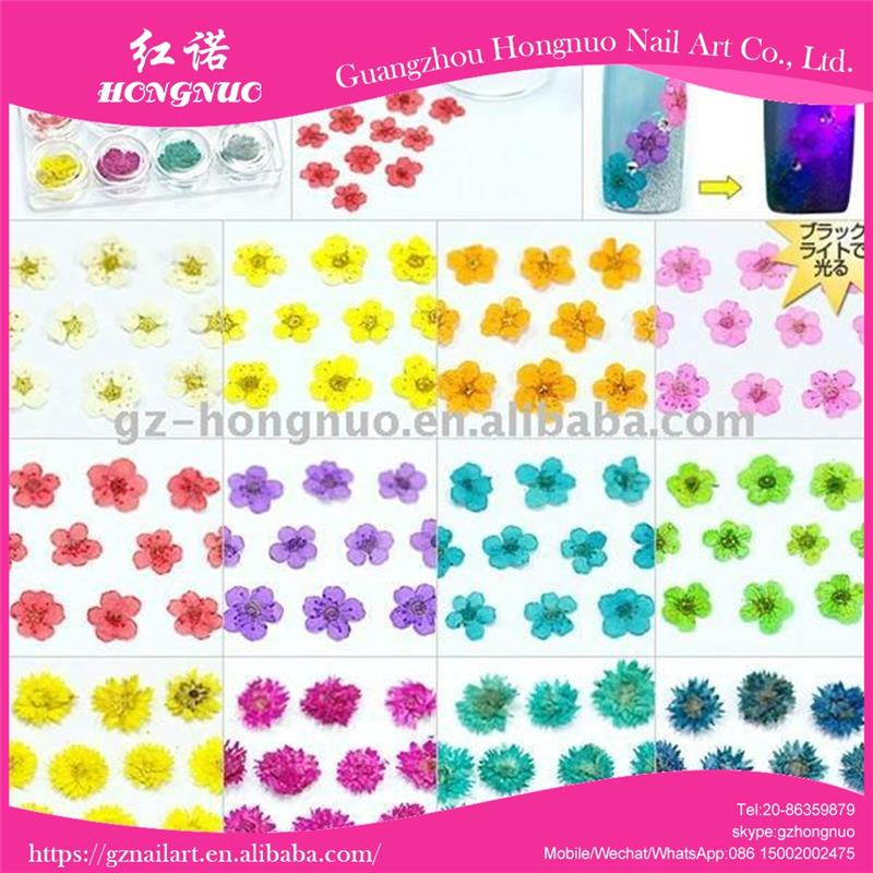 12Color Dried Flower Acrylic Nail Art Tips Decoration HN251