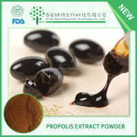 Top Quality Natural Bee Propolis flavone powder,raw propolis extract