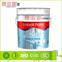 Caboli white cement concrete wall putty interior paint