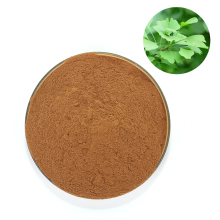 GMP Top Manufacturer Offer Pure Organic Ginkgo Biloba Extract Powder( USP39)