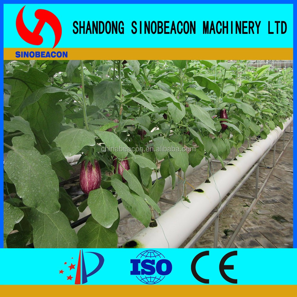 Large Plastic Agricultural Soilless Cultivation Growing Tray Strawberry Hydroponic