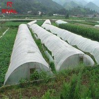China Suppliers 200 Micron UV Blocking Greenhouse Used PE Clear Plastic Film For Agricultural Design