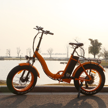 High quality aluminum alloy electric bicycle china folding fat tire bike