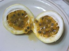 Maracuya, Passion fruit