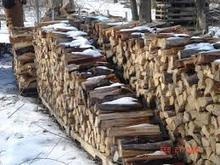Fire wood, eucalyptus, birch, oak, pine, acasia, beech, rubber fire wood
