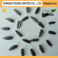 Export To Egypt Songs Foods Sunflower Seeds