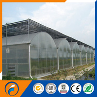 Venlo Type PC Greenhouse