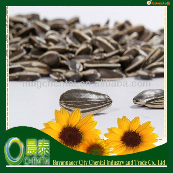 Wholesale 2013New Crop Big Size 24/68 American Sunflower Seeds 5009