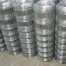 High quality hot sale hot dipped galvanized steel deer wire mesh farm fence (ISO9001;MANUFACTURER)
