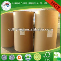 white board grey back duplex board Offset Paper Reel Or Sheet High Brightness Coated PE Printing Paper