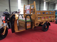 OEM High Quality Electric Cargo Tricycle Made in China