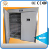 /product-gs/pigeon-egg-incubator-for-sale-60289163779.html